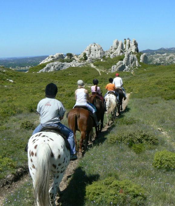 balade à cheval Alpilles